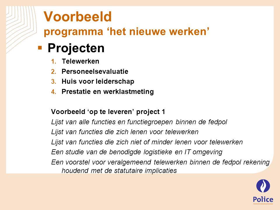 Voorbeeld programma 'het nieuwe werken'  Projecten  Telewerken  Personeelsevaluatie  Huis voor leiderschap  Prestatie en werklastmeting Voorb