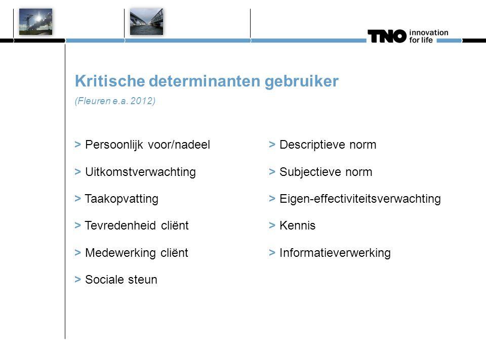 Kritische determinanten gebruiker (Fleuren e.a. 2012) > Persoonlijk voor/nadeel> Descriptieve norm > Uitkomstverwachting> Subjectieve norm > Taakopvat