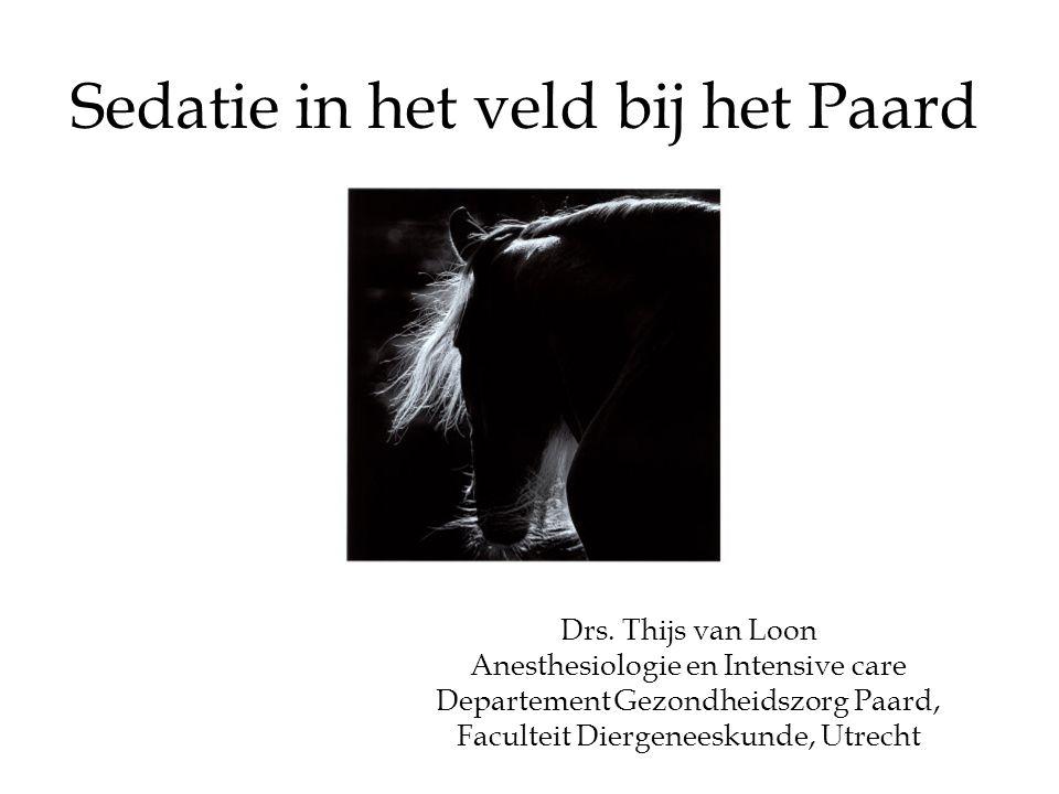 Sedatie in het veld bij het Paard Drs. Thijs van Loon Anesthesiologie en Intensive care Departement Gezondheidszorg Paard, Faculteit Diergeneeskunde,
