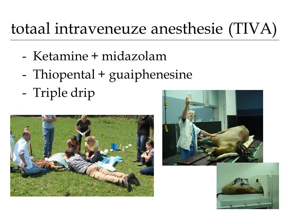 totaal intraveneuze anesthesie (TIVA) -Ketamine + midazolam -Thiopental + guaiphenesine -Triple drip