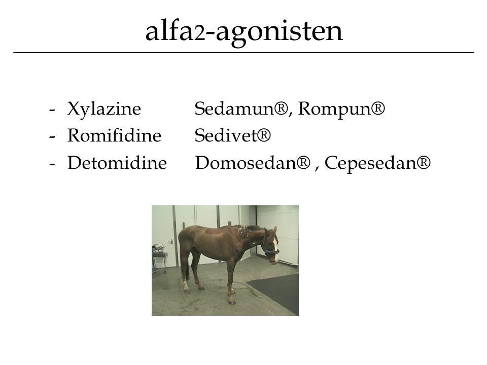 alfa 2 -agonisten -XylazineSedamun®, Rompun® -RomifidineSedivet® -DetomidineDomosedan®, Cepesedan®