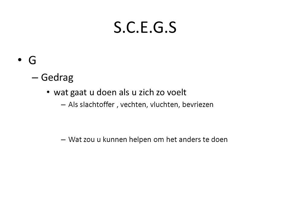 S.C.E.G.S G – Gedrag wat gaat u doen als u zich zo voelt – Als slachtoffer, vechten, vluchten, bevriezen – Wat zou u kunnen helpen om het anders te do