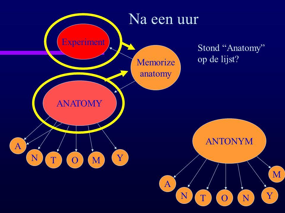 "ANATOMY A N TOM Y Memorize anatomy Experiment Na een uur Stond ""Anatomy"" op de lijst? ANTONYM A N TON Y M"