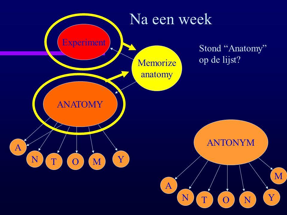 """ANATOMY A N TOM Y Memorize anatomy Experiment Na een week Stond """"Anatomy"""" op de lijst? ANTONYM A N TON Y M"""