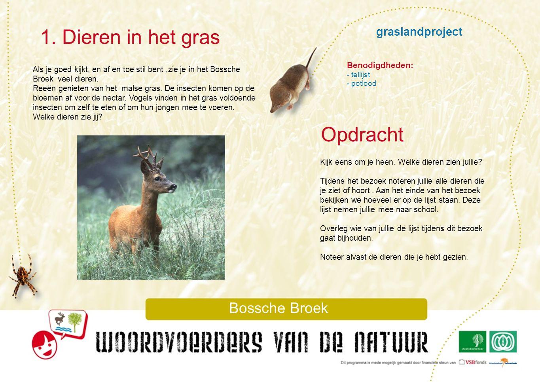 graslandproject 2.Grasboeketje Bossche Broek Je ziet in het Bossche Broek heel veel gras.