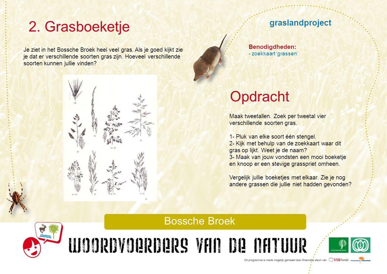 graslandproject 3.Plantenonderzoek Bossche Broek In het Bossche Broek vind je vooral grasland.