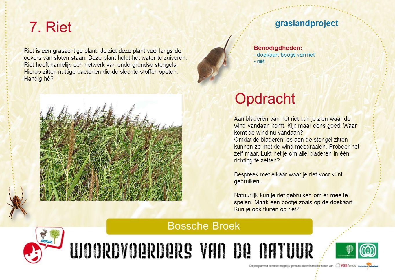 graslandproject Doekaart : Bootje van Riet Bossche Broek
