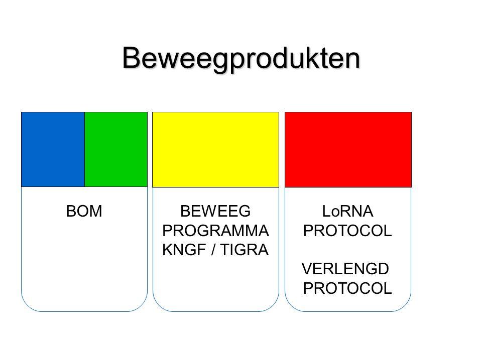 Beweegprodukten BOMBEWEEG PROGRAMMA KNGF / TIGRA LoRNA PROTOCOL VERLENGD PROTOCOL