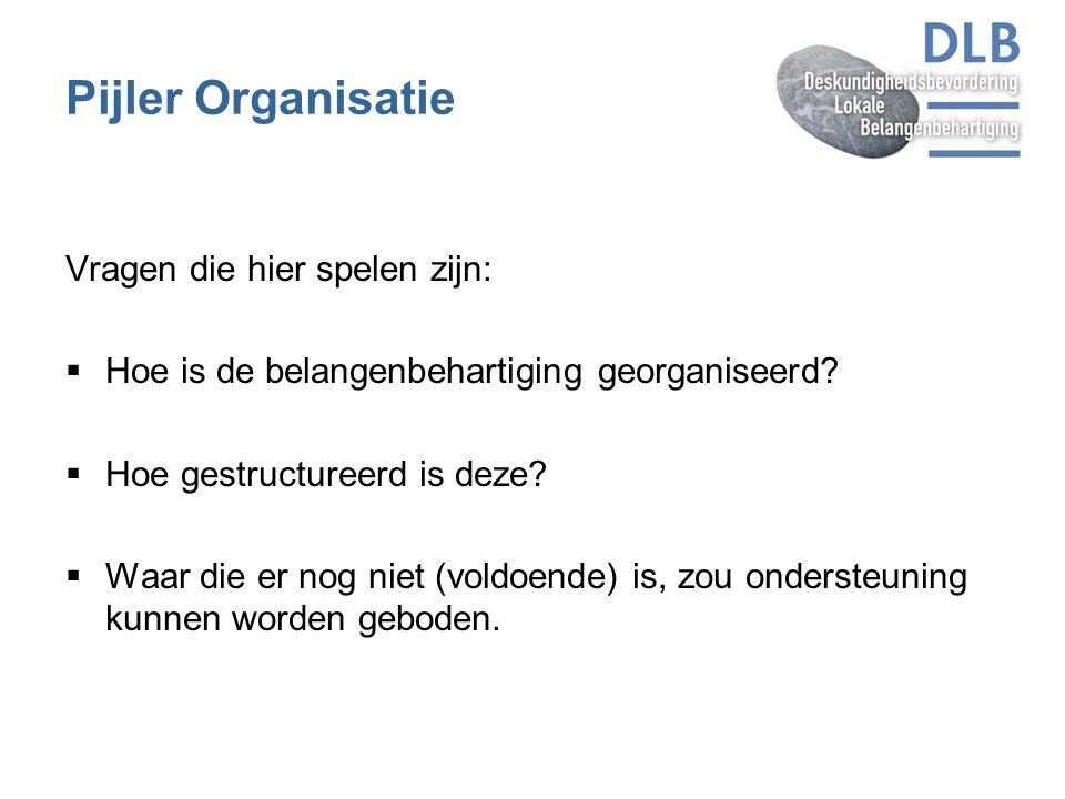 Pijler Organisatie Vragen die hier spelen zijn:  Hoe is de belangenbehartiging georganiseerd?  Hoe gestructureerd is deze?  Waar die er nog niet (v