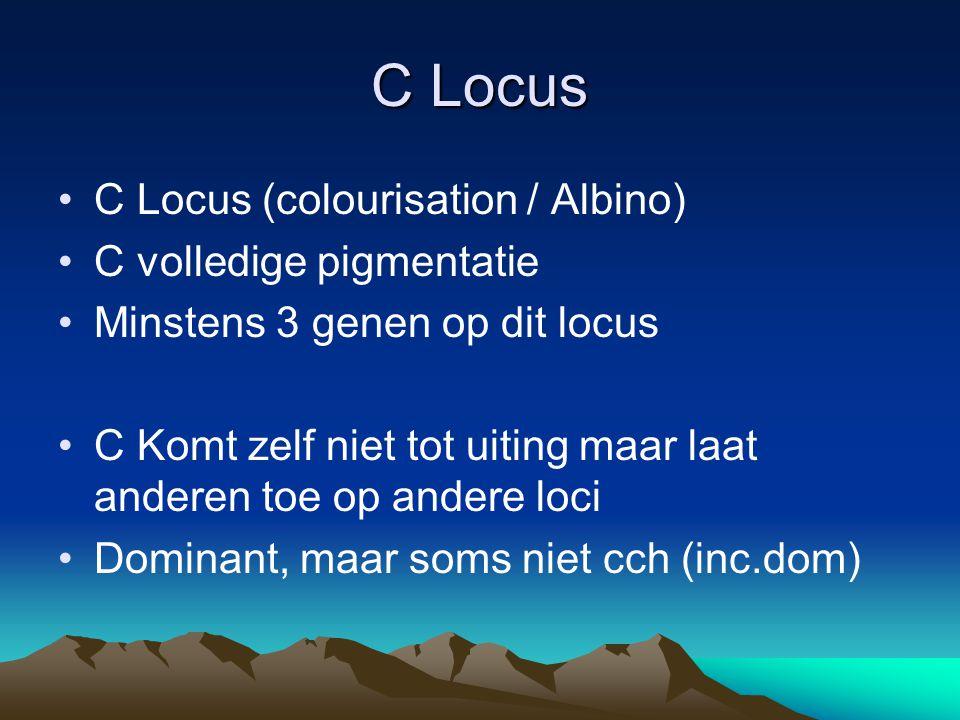 C Locus C Locus (colourisation / Albino) C volledige pigmentatie Minstens 3 genen op dit locus C Komt zelf niet tot uiting maar laat anderen toe op an