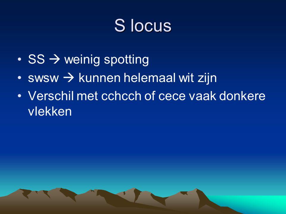 S locus SS  weinig spotting swsw  kunnen helemaal wit zijn Verschil met cchcch of cece vaak donkere vlekken