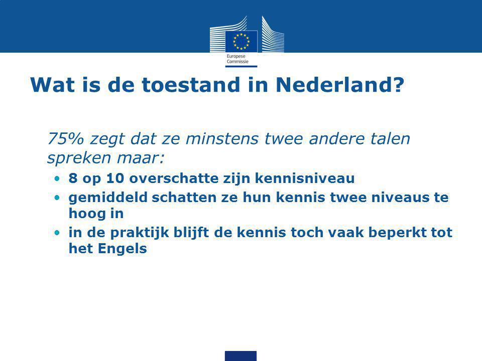 Wat is de toestand in Nederland? 75% zegt dat ze minstens twee andere talen spreken maar: 8 op 10 overschatte zijn kennisniveau gemiddeld schatten ze