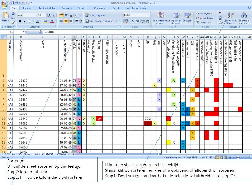 Sorteren: U kunt de sheet sorteren op bijv leeftijd.