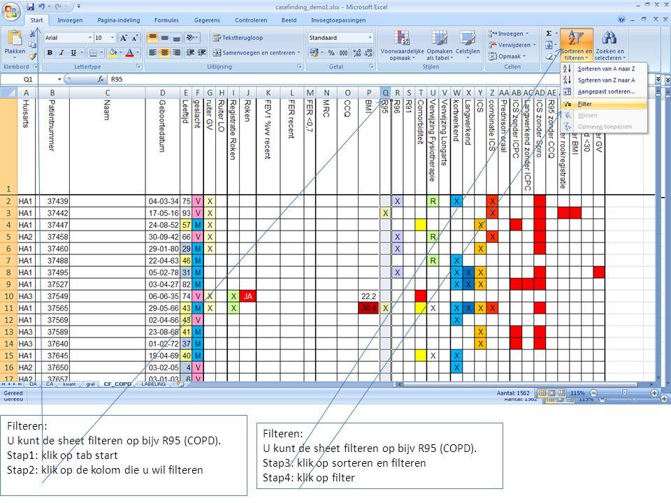 Filteren: U kunt de sheet filteren op bijv R95 (COPD).