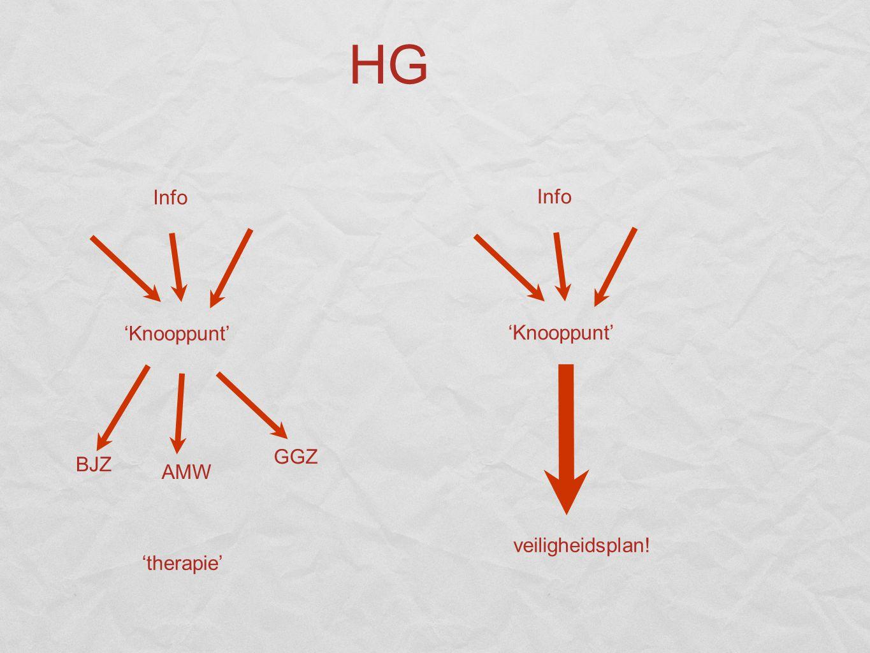 HG 'Knooppunt' Info 'therapie' 'Knooppunt' Info veiligheidsplan! BJZ GGZ AMW