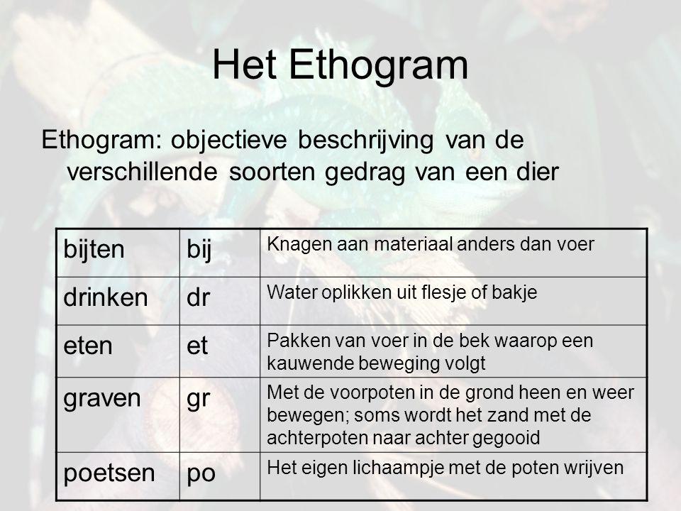 Het Ethogram Ethogram: objectieve beschrijving van de verschillende soorten gedrag van een dier bijtenbij Knagen aan materiaal anders dan voer drinken