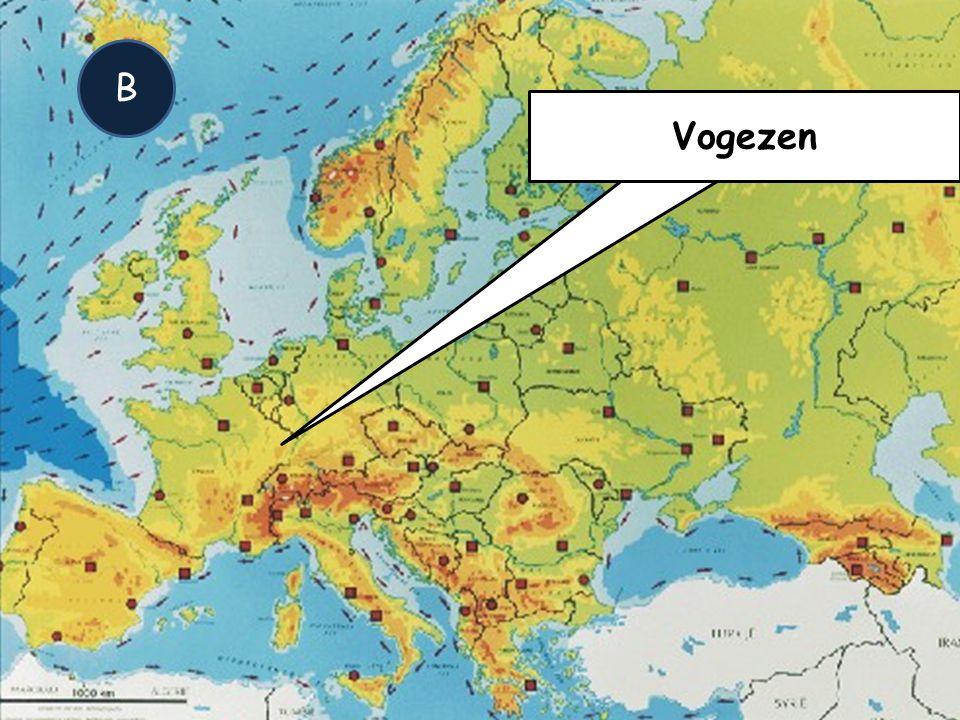 B Vogezen