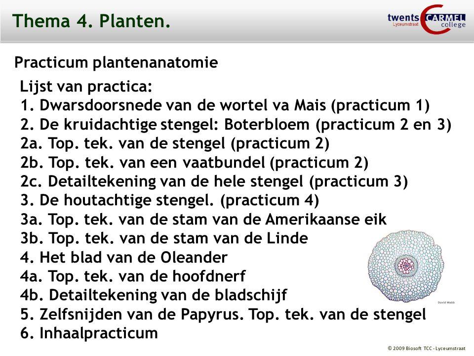 © 2009 Biosoft TCC - Lyceumstraat Thema 4. Planten. Practicum plantenanatomie Lijst van practica: 1. Dwarsdoorsnede van de wortel va Mais (practicum 1