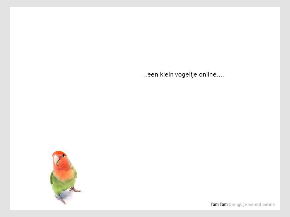 …een klein vogeltje online….