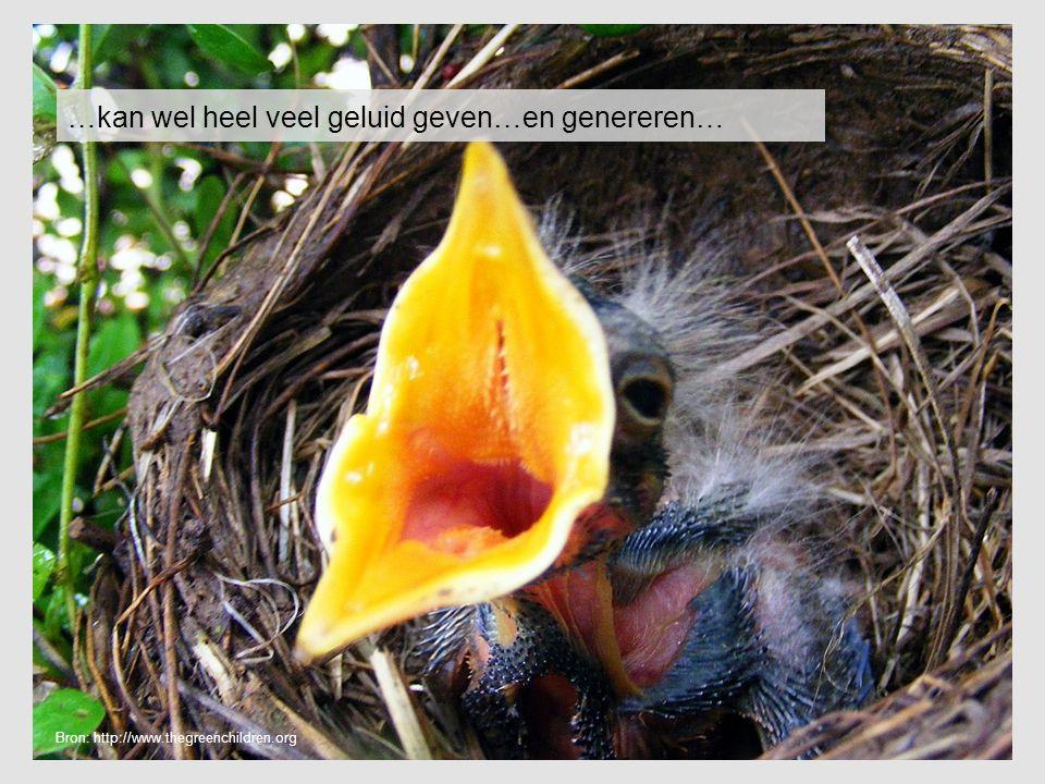 …kan wel heel veel geluid geven…en genereren… Bron: http://www.thegreenchildren.org