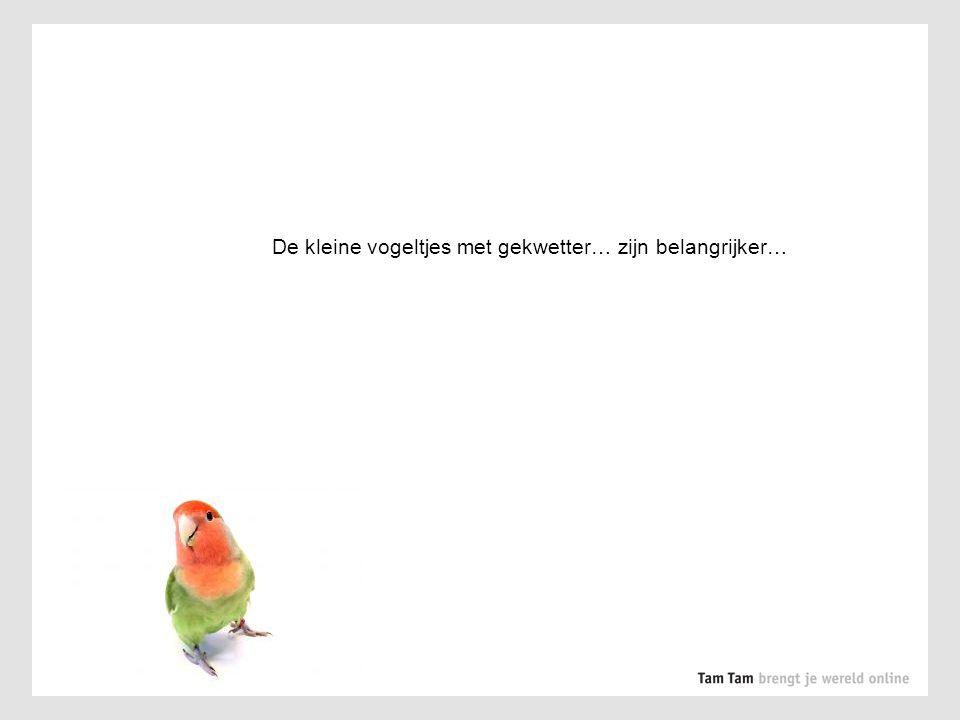 De kleine vogeltjes met gekwetter… zijn belangrijker…