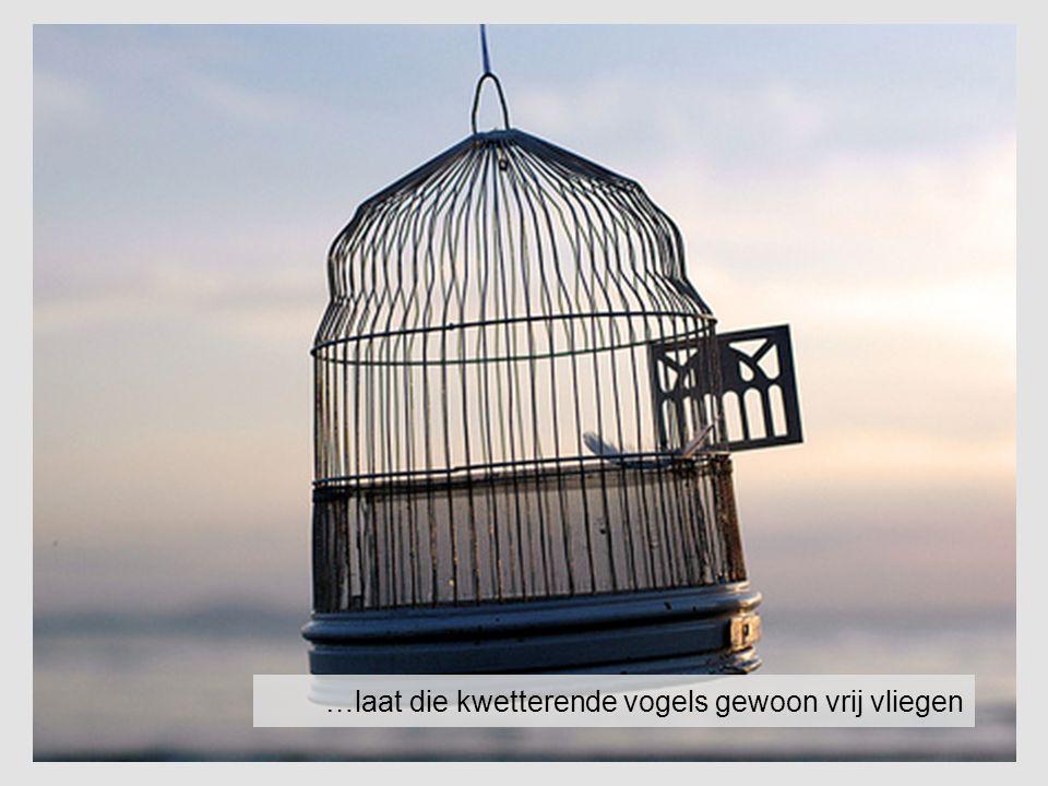 …laat die kwetterende vogels gewoon vrij vliegen