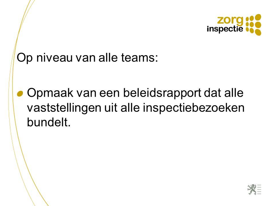 Op niveau van alle teams: Opmaak van een beleidsrapport dat alle vaststellingen uit alle inspectiebezoeken bundelt.