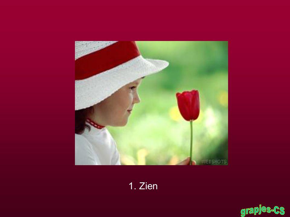 Het meisje aarzelde en zei: « Ik denk dat de zeven wereldwonderen de volgende zijn: »