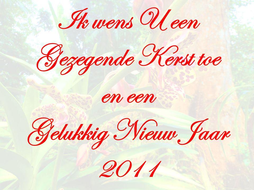 Ik wens U een Gezegende Kerst toe en een Gelukkig Nieuw Jaar 2011