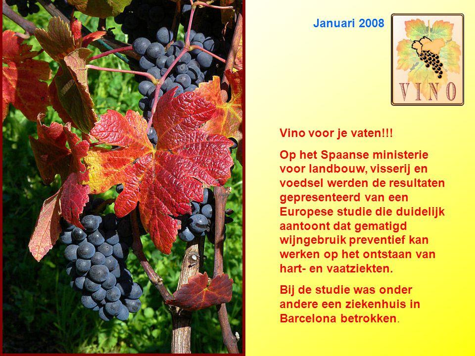 Januari 2008 Vino voor je vaten!!.