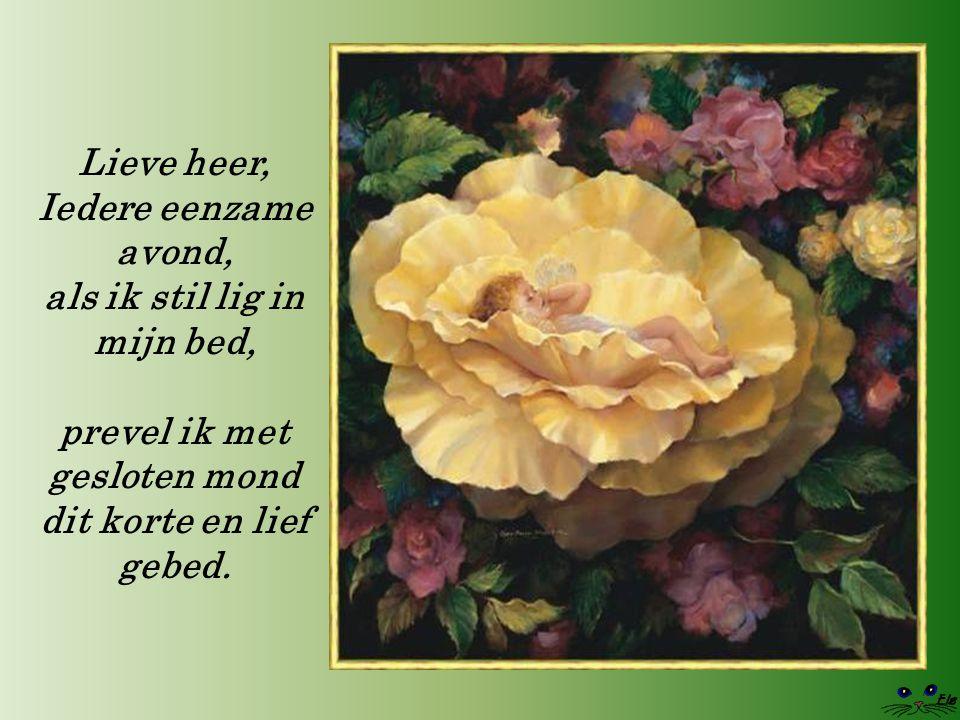 Lieve heer, Iedere eenzame avond, als ik stil lig in mijn bed, prevel ik met gesloten mond dit korte en lief gebed.