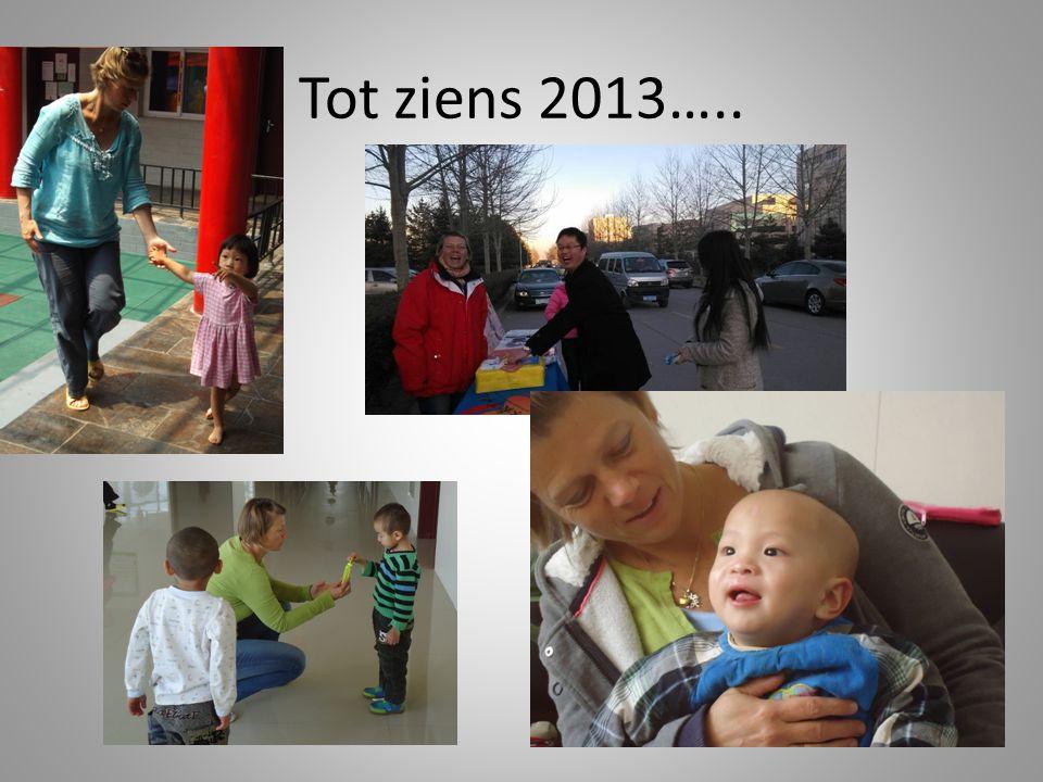 Tot ziens 2013…..