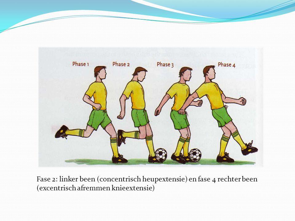 Fase 2: linker been (concentrisch heupextensie) en fase 4 rechter been (excentrisch afremmen knieextensie)