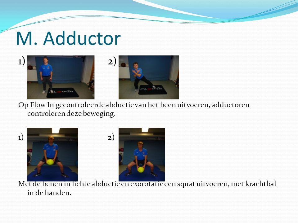 M. Adductor 1)2) Op Flow In gecontroleerde abductie van het been uitvoeren, adductoren controleren deze beweging. 1)2) Met de benen in lichte abductie