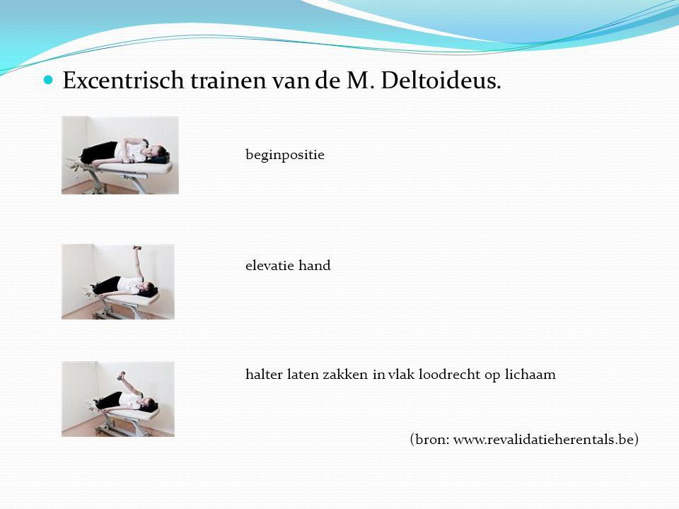 Excentrisch trainen van de M. Deltoideus. beginpositie elevatie hand halter laten zakken in vlak loodrecht op lichaam (bron: www.revalidatieherentals.