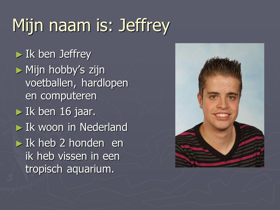 Mijn naam is: Jeffrey ► Ik ben Jeffrey ► Mijn hobby's zijn voetballen, hardlopen en computeren ► Ik ben 16 jaar. ► Ik woon in Nederland ► Ik heb 2 hon