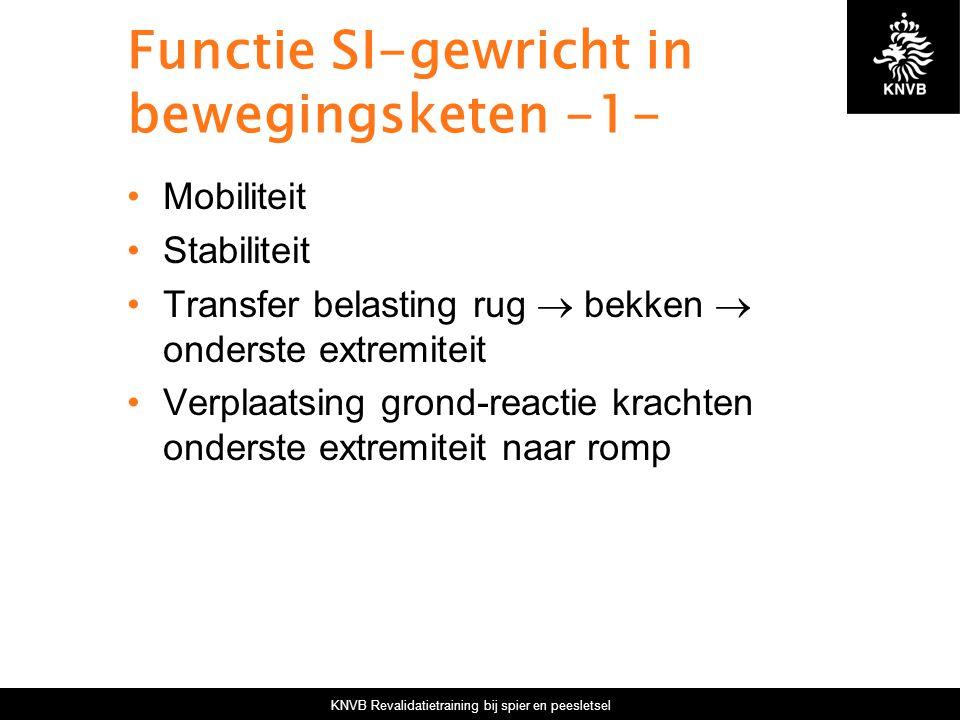 KNVB Revalidatietraining bij spier en peesletsel Functie SI-gewricht in bewegingsketen -1- Mobiliteit Stabiliteit Transfer belasting rug  bekken  on