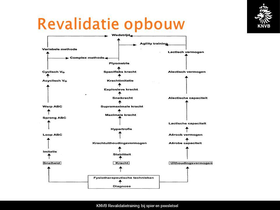 KNVB Revalidatietraining bij spier en peesletsel Revalidatie opbouw