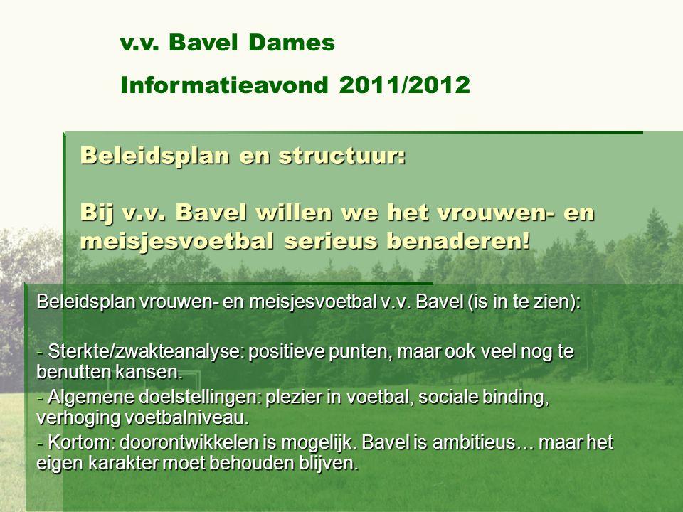 Beleidsplan en structuur: Bij v.v.