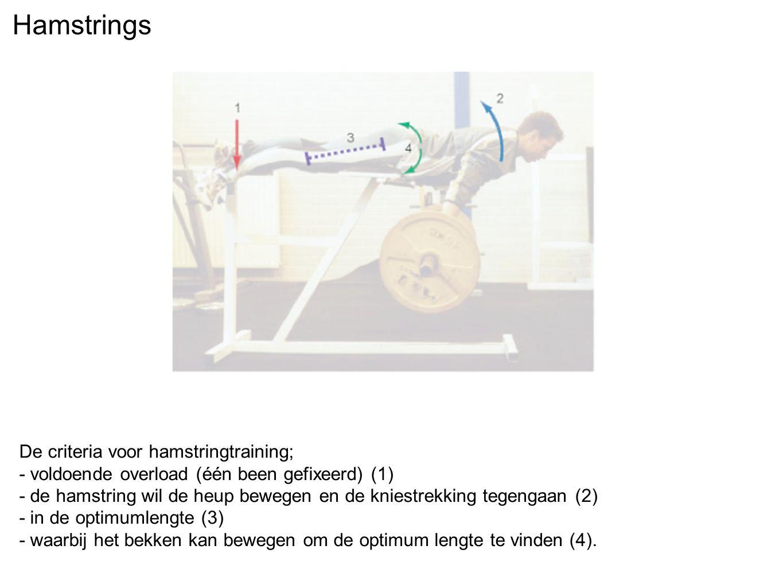 Hamstrings De criteria voor hamstringtraining; - voldoende overload (één been gefixeerd) (1) - de hamstring wil de heup bewegen en de kniestrekking te