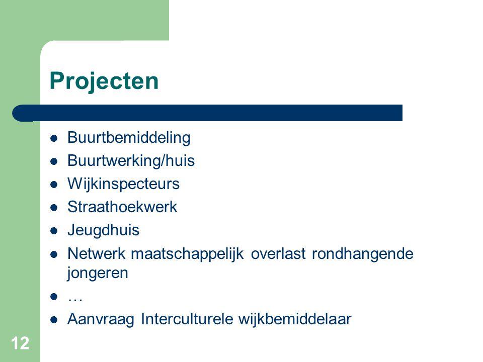 Projecten Buurtbemiddeling Buurtwerking/huis Wijkinspecteurs Straathoekwerk Jeugdhuis Netwerk maatschappelijk overlast rondhangende jongeren … Aanvraag Interculturele wijkbemiddelaar 12