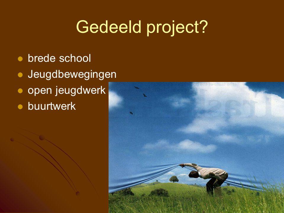 Gedeeld project? brede school Jeugdbewegingen open jeugdwerk buurtwerk