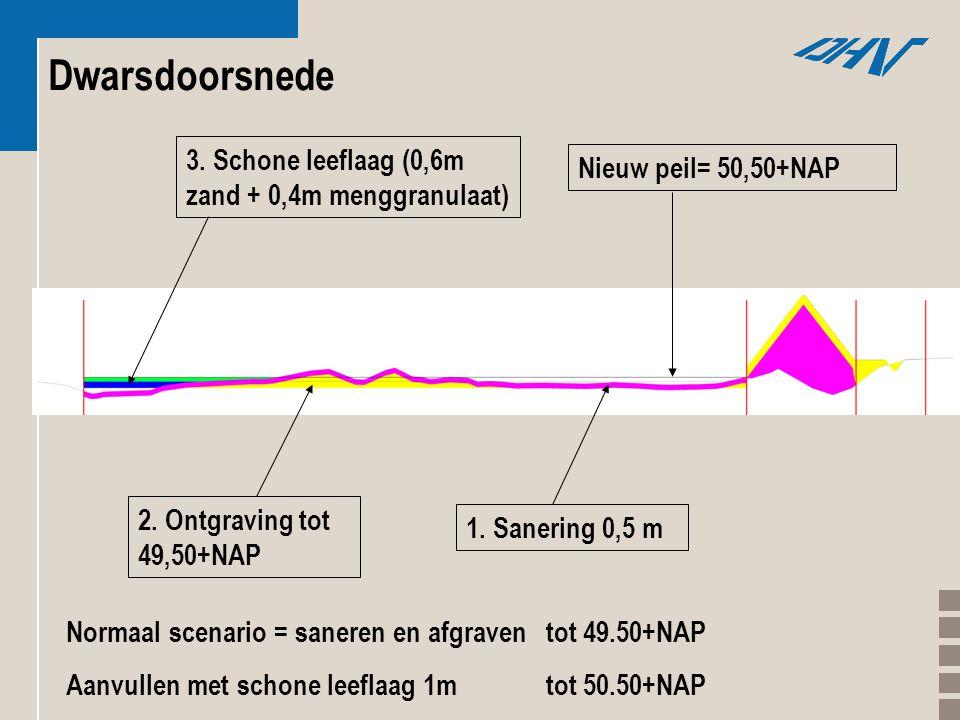 1. Sanering 0,5 m 2. Ontgraving tot 49,50+NAP 3. Schone leeflaag (0,6m zand + 0,4m menggranulaat) Nieuw peil= 50,50+NAP Dwarsdoorsnede Normaal scenari
