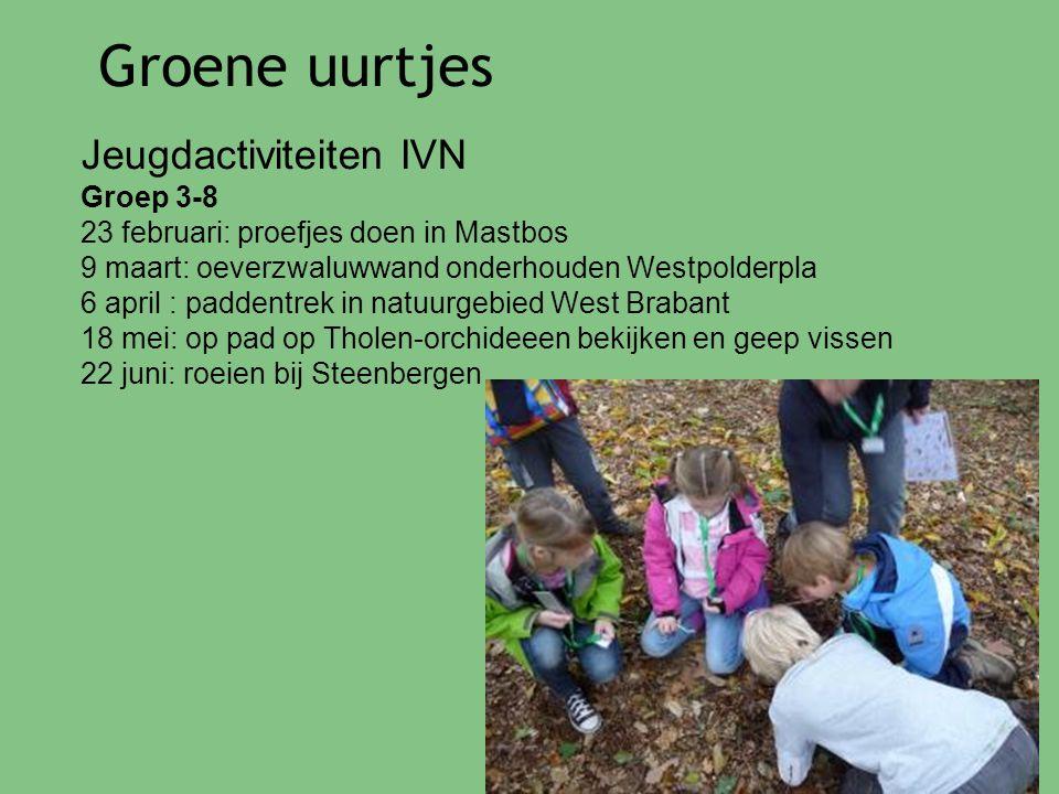 Groene uurtjes Jeugdactiviteiten IVN Groep 3-8 23 februari: proefjes doen in Mastbos 9 maart: oeverzwaluwwand onderhouden Westpolderpla 6 april : padd