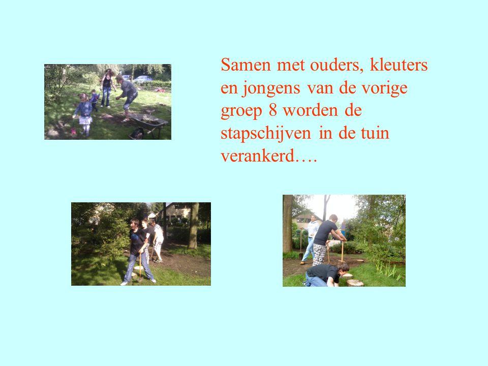 Samen met ouders, kleuters en jongens van de vorige groep 8 worden de stapschijven in de tuin verankerd….