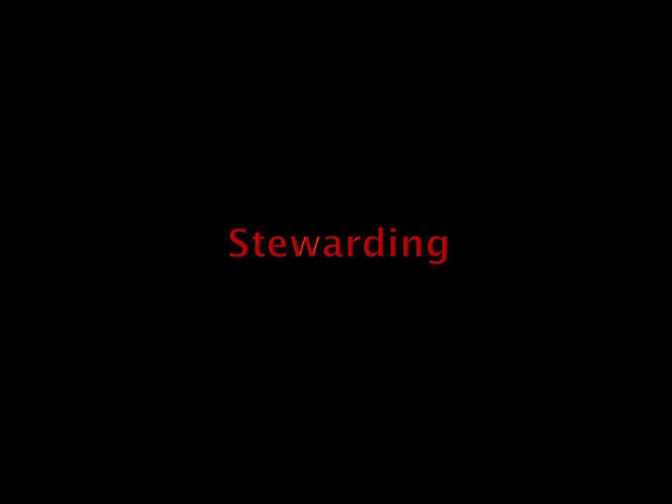 Stewards = team (54) Radiocommunicatie (CP) Off-game communicatie Veiligheidsactoren Risicowedstrijden Evaluatie