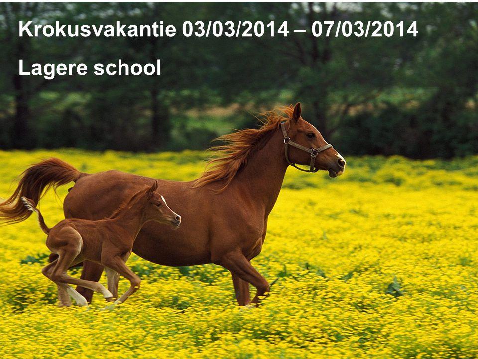 Krokusvakantie 03/03/2014 – 07/03/2014 Lagere school
