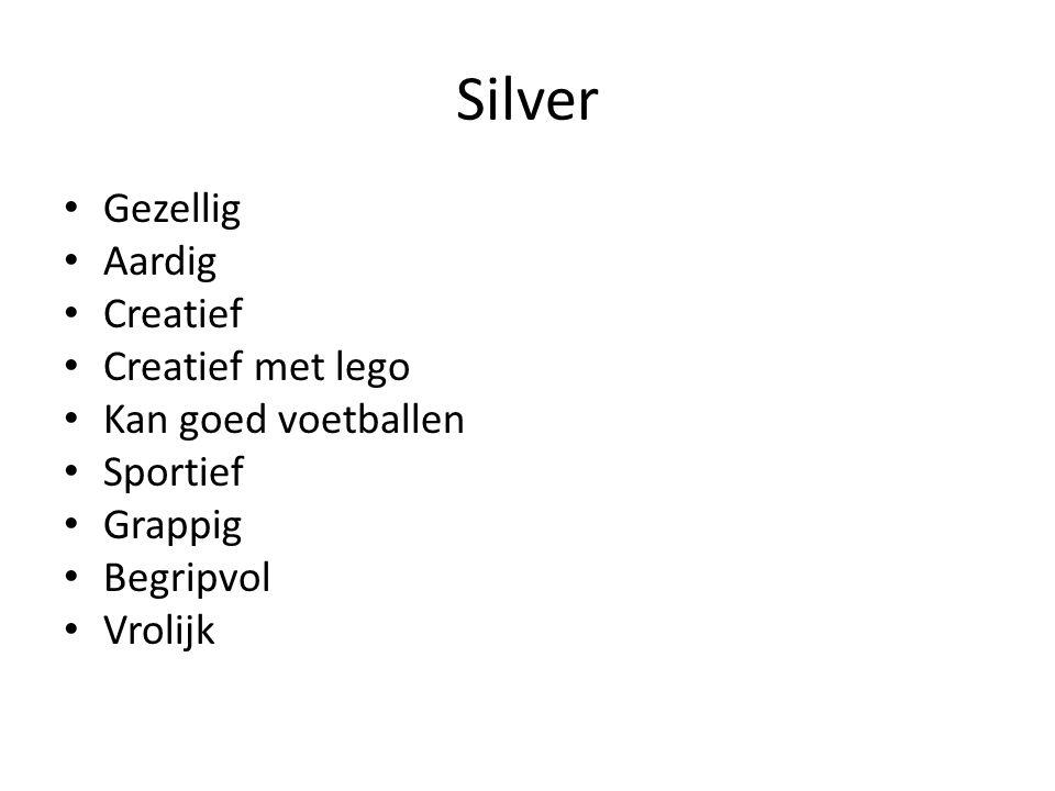 Silver Gezellig Aardig Creatief Creatief met lego Kan goed voetballen Sportief Grappig Begripvol Vrolijk