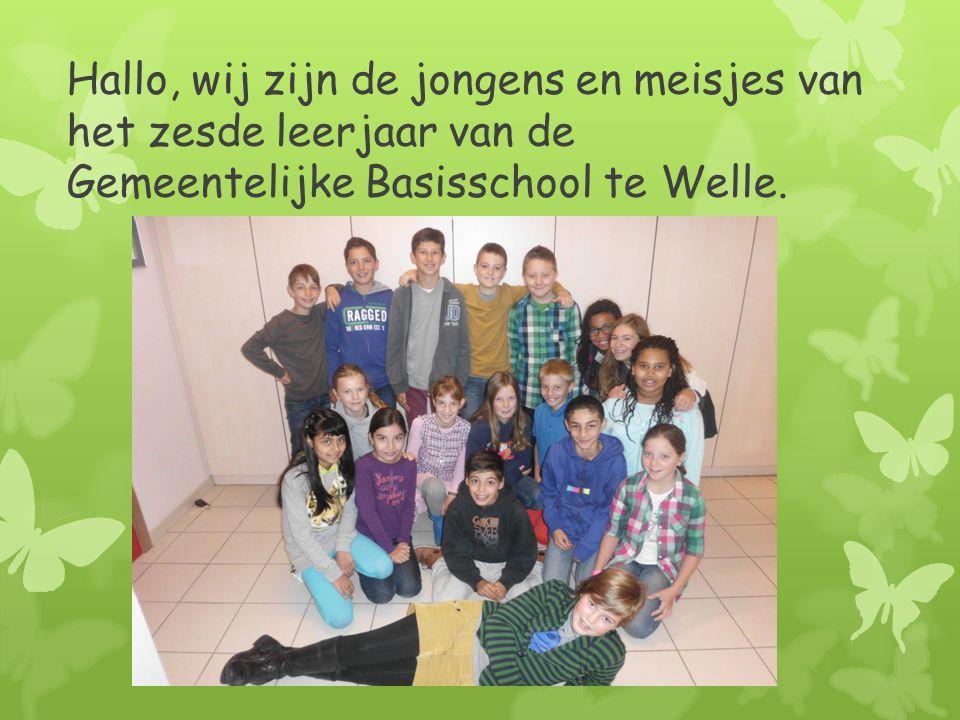 Hallo, wij zijn de jongens en meisjes van het zesde leerjaar van de Gemeentelijke Basisschool te Welle.