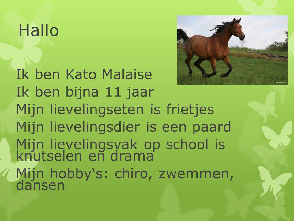 Hallo Ik ben Kato Malaise Ik ben bijna 11 jaar Mijn lievelingseten is frietjes Mijn lievelingsdier is een paard Mijn lievelingsvak op school is knutse